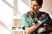 medicina-veterinaria-series-para-se-inspirar